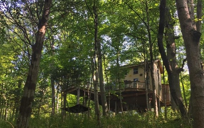 Pete Nelson Treehouse in Germantown KY