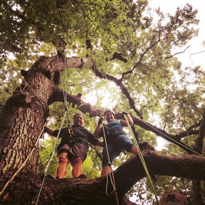 EarthJOY Tree Climbing Experience