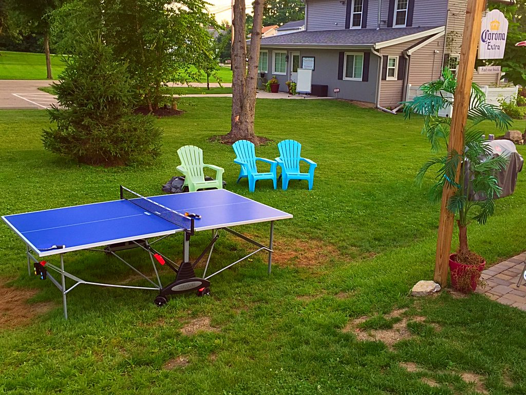 Cozy's Cottage ping pong