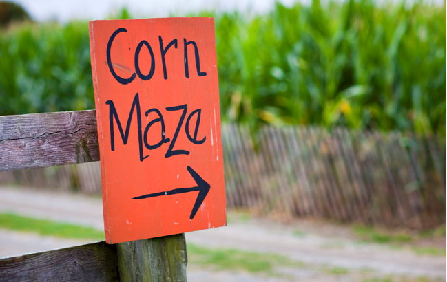 Greater Cincinnati Corn Mazes