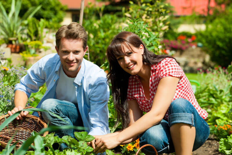 Superior Gardening Advice For Couples